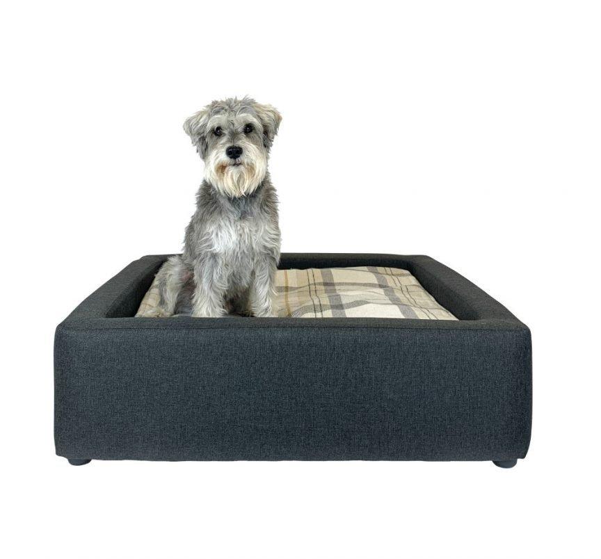 Skye Dog Bed With Dog
