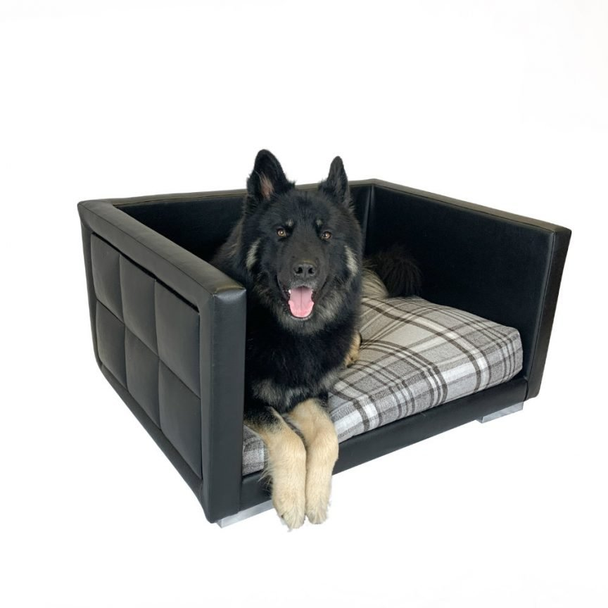 Bute Dog Bed With Dog
