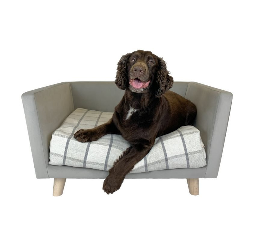 Canna Dog Bed With Dog