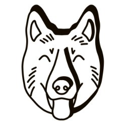 Bear the dog
